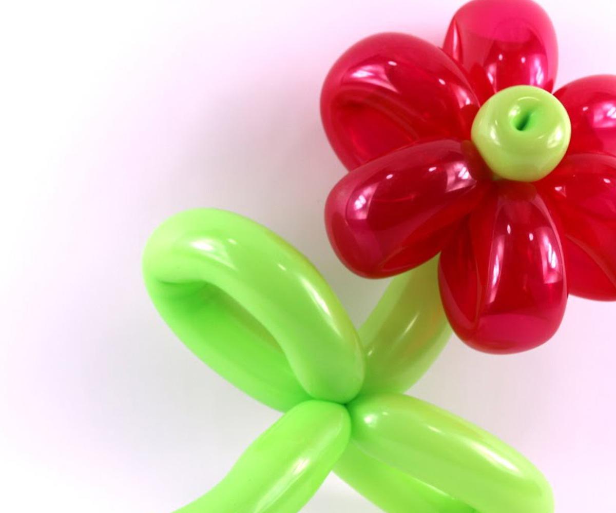 Une magnifique fleur avec des ballons de bauruche